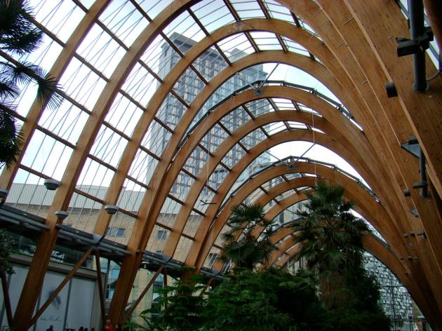 Inside Sheffield Winter Garden